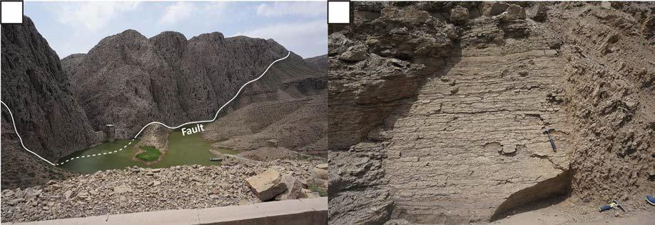 캄브리아기 Abuqiehai층 혹은 Zhangxia층에 해당하는 지층(b)과 오르도비스기 Zhuozishan층이 단층에 의해 접촉하고 있다(a). a에서 단층을 경계로 아래쪽이 캄브리아기 지층이고 위쪽이 오르도비스기 지층이다.