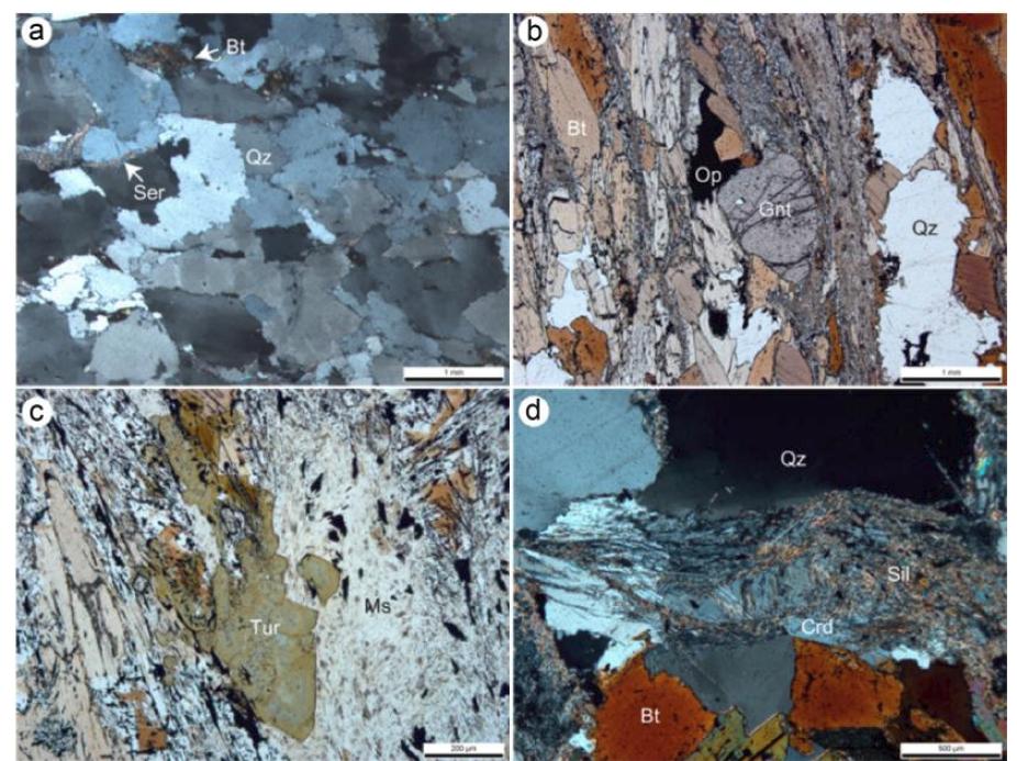 장봉도의 변성사질암(a)과 이질편암(b, c, d)의 편광현미경 사진