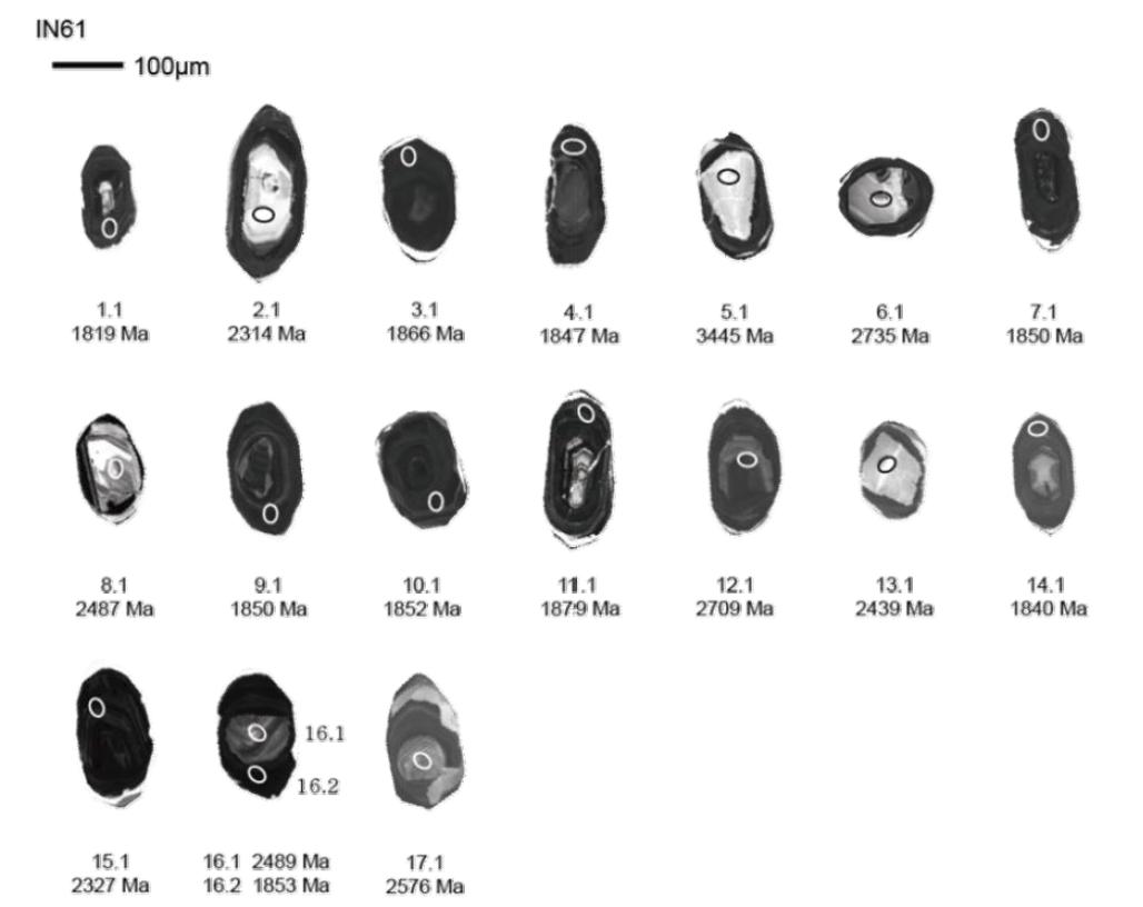 광명 지역 화강암질편마암(IN61) 저어콘의 음극발광영상과 SHRIMP U-Pb 연령