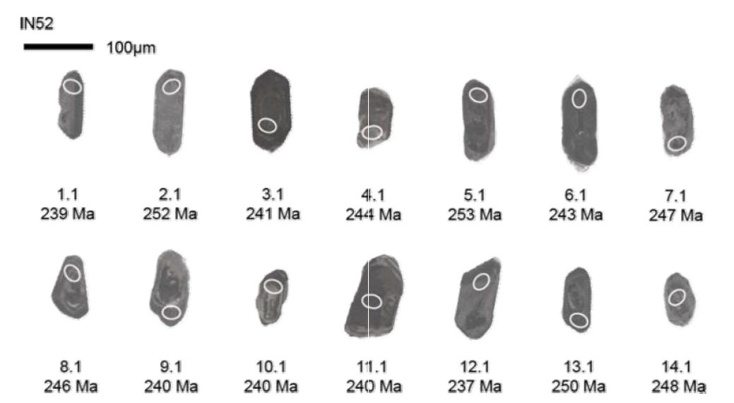 시흥 지역 엽리상 화강암(IN52) 저어콘의 음극발광영상과 SHRIMP U-Pb 연령