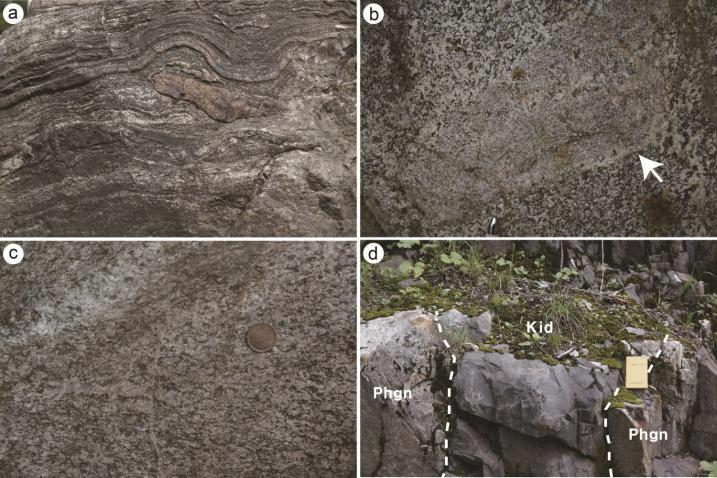 (a) 엽리구조를 보이는 화강암질 히다편마암, (b) 히다편마암이 화강암 기원임을 지시하는 세립질 포유암, (c 미약한 엽리를 나타내는 화강섬록암질 히다편마암, (d) 히다편마암(Phgn)을 관입하는 백악 기 중성암맥(Kid).