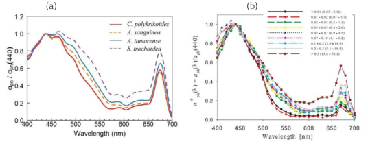 (a) Phytoplankton absorption spectra of red tide species, (b) phytoplankton absorption spectra of unspecified phytoplankton assemblages