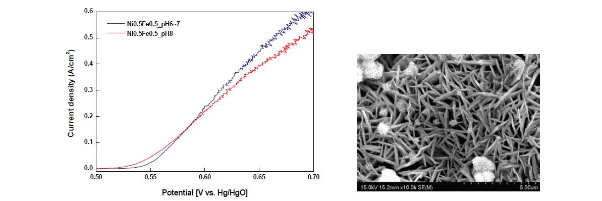 좌) Ni0.5Fe0.5 hydroxide 코팅 전극(pH조정) OER LSV결과(1M KOH, 25℃)(우) Ni0.5Fe0.5 hydroxide(pH 8) 전극 표면 SEM분석