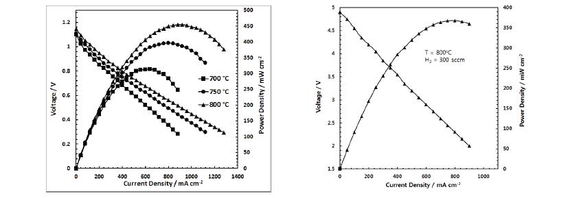 단전지(좌) 및 세그먼트형 단전지(우)의 성능 곡선