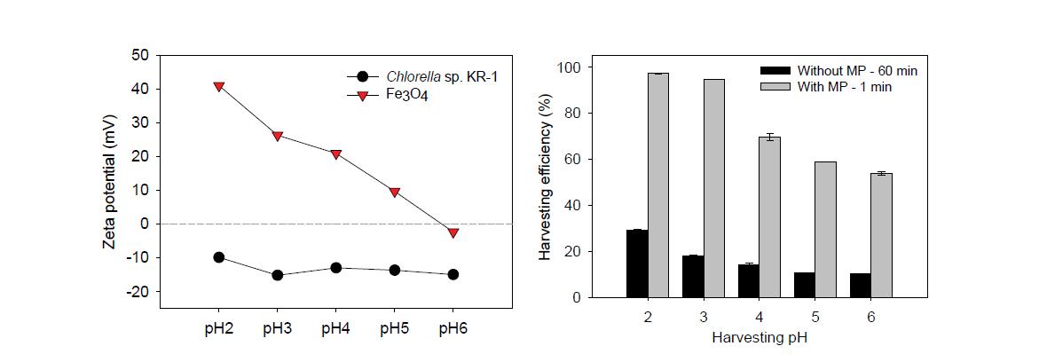pH 에 따른 제타전위와 수확효율