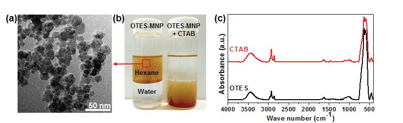 양이온성 계면활성제 개질된 Fe3O4 나노 입자의 물리적인 특성평가