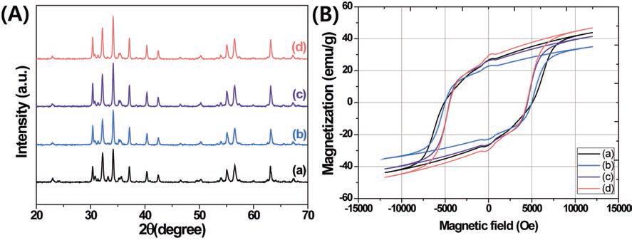 합성된 자성 미립자 BaFe12O19의 (A) XRD 패턴 그래프와 (B) 자기 이력 곡선 (a) 0.3M BaFe12O19 with 0.6 M citric acid (b) 0.02 M BaFe12O19 (c) 0.1 M BaFe12O19 (d) 0.5 M BaFe12O19