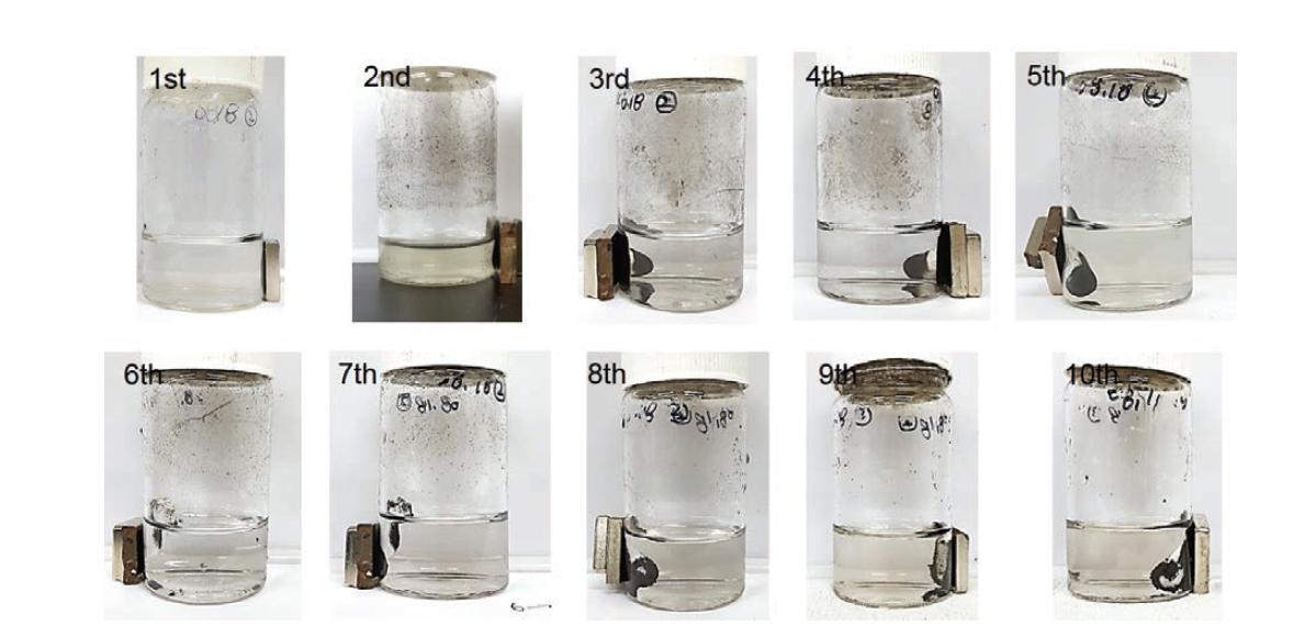 자성응집제 회차별 재사용 테스트 후 디지털 사진