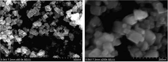 50 nm 수준의 cube 형태를 갖는 자성 입자