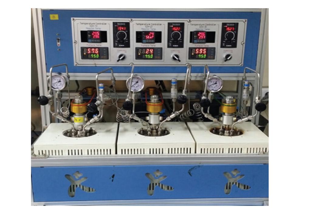 사용한 batch type reactor