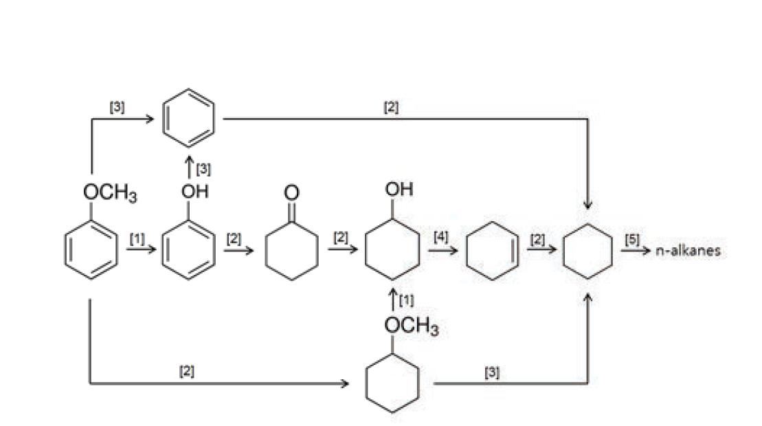 Anisol의 HDO 반응에서 가능한 여러 가지 반응경로들