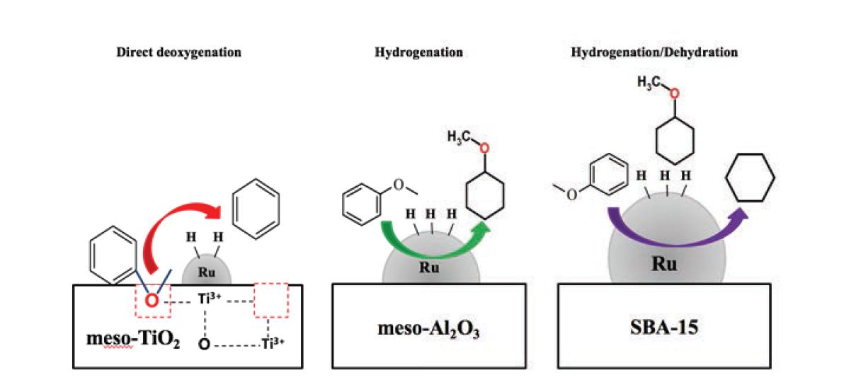 Ru 입자 크기와 지지체의 종류에 따른 anisole HDO의 reaction mechanism