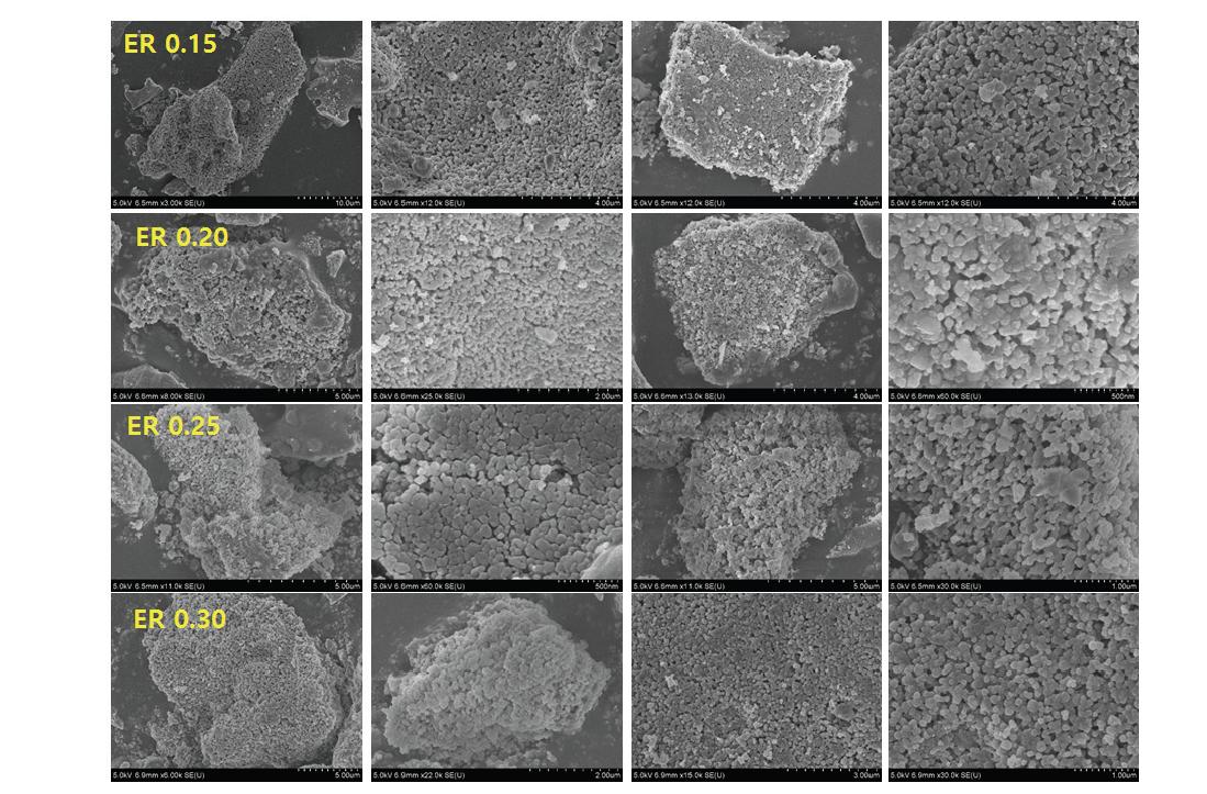 조업 온도 800℃ 조건에서 회수한 왕겨 유래 실리카의 SEM 이미지