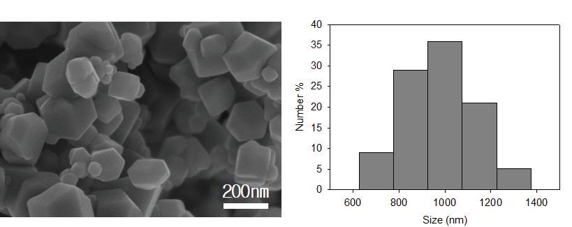 시그마알드리치 Fe3O4 자성 나노입자의 SEM 이미지와 용액상의 입도분포