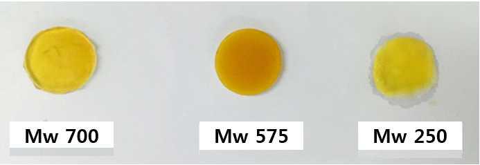 분자량 별 이타콘산 도입 PEGDA 하이드로겔 사진