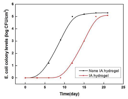 합성 조건 별 하이드로겔의 E. coli colony levels