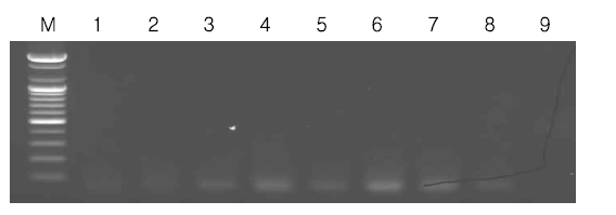 Specificity of multiplex-PCR method for other Bacteria