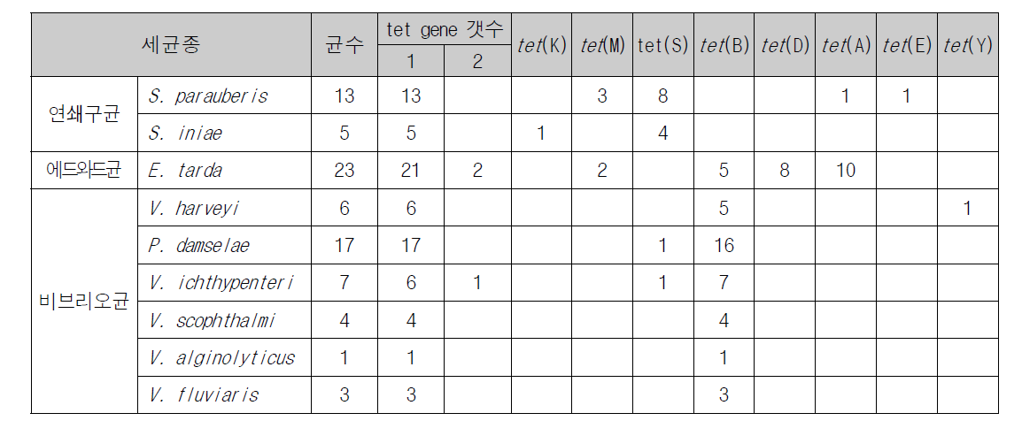 Tetracycline resistance gene distribution of fish pathogenic bacteria