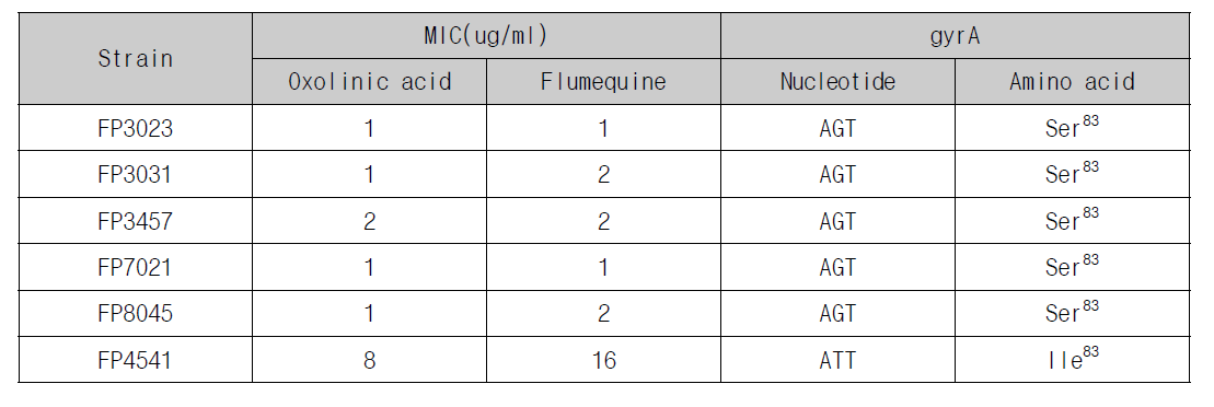 Comparison of MIC of quinolone with point mutation of V. harveyi gyrA gene