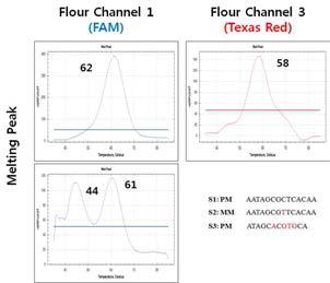 Probe-binding temperature test for discriminating E. tarda subtype