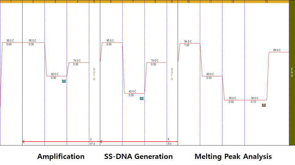 Temperature conditions of real-time PCR