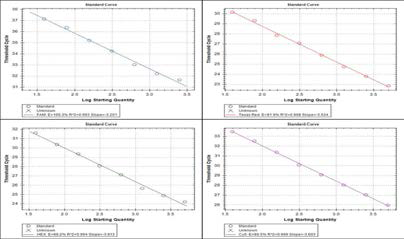 measuring standard point of each dilutant for quantitative analysis of PNA RT-PCR