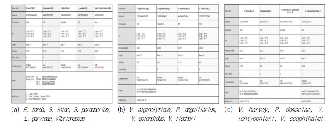 Tm parameter analysis of PNA probe for fish pathogenic bacteria discrimination
