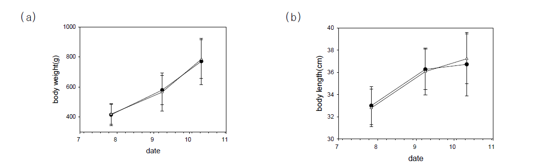 Changes in body weight and total length of cultured flounder