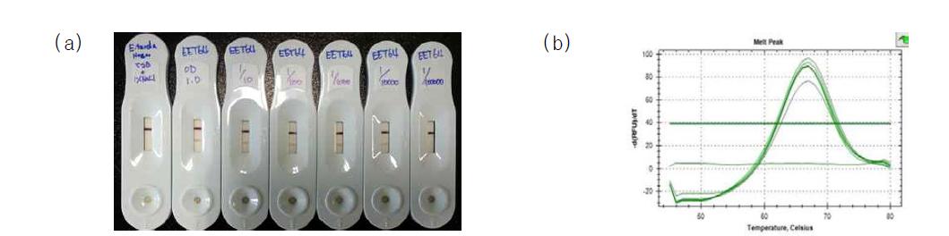 Diagnosis of edwardsiellosis of eels using immunological and molecular diagnostic kits