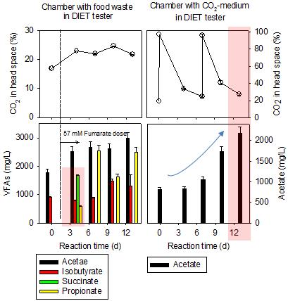 전자직접전달기작 연구를 위한 시험기 (Diet tester) 개발 및 시험