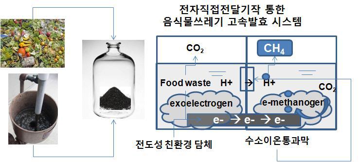 전도성 담체 기반, 전기활성발효균 및 공생에 의한 고속발효 (1차 년도 수행)