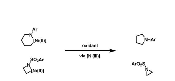 니켈 3가와 탄소-질소 결합형성