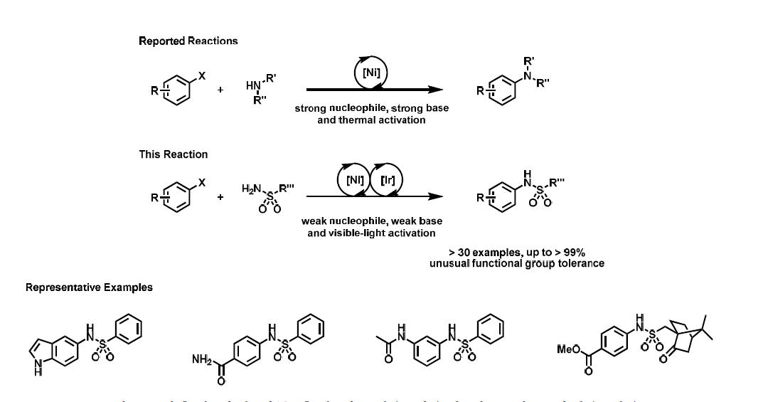 광촉매 니켈 이중 촉매 시스템을 이용한 탄소-질소 짝지음 반응