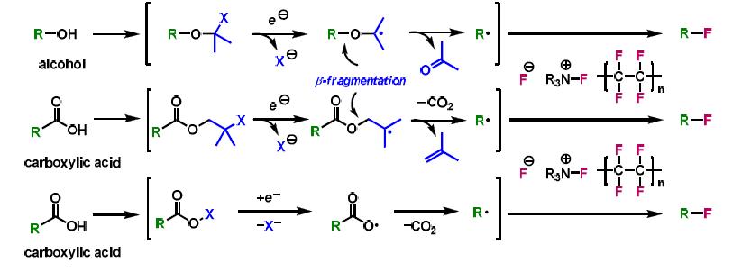 알코올 및 카르복시산의 활성화를 통한 라디칼 형성