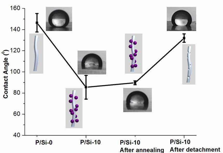 Thermal annealingr 후에 silica 나노입자의 부착과 탈착의 효과를 보여주는 nanofibrous mats의 접촉각