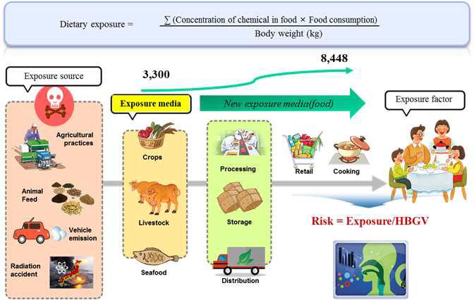 식품 중 화학물질의 위해평가 공식