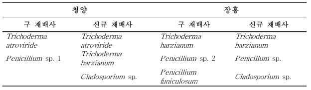 청양과 장흥에 소재한 구 재배사 및 신규 재배사내 공기 중에 존재하는 진균
