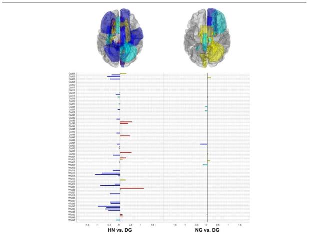 규정화 회귀 분석을 이용했을 때 건강한 피험자군(HN) 및 비질환적 인터넷 게 임 피험자군(NG)으로부터 인터넷 게임 중독 질환 피험자군(DG)을 구분하기 위해 선 택된 신경해부학적 특징