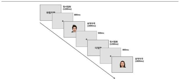 fMRI 실험 패러다임