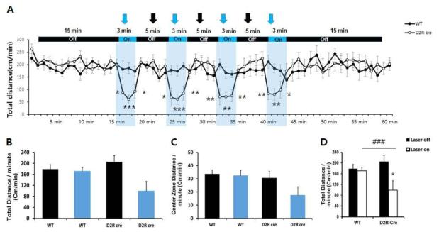D2R Cre쥐의 CeA에서 VTA로 전사되고 있는 D2R 발현 신경세포의 활성화는 부동성을 증가시킴.
