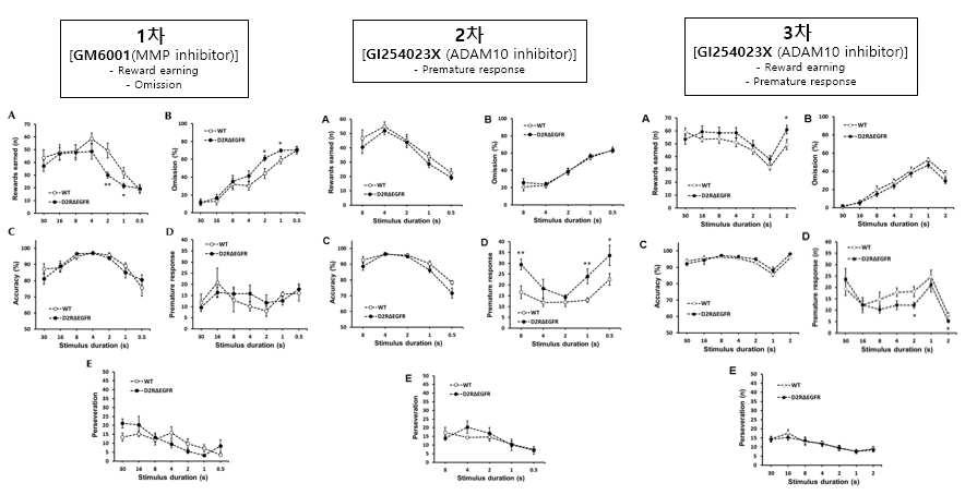 3차에 걸친 정상 쥐와 D2R-Cre:EGFRloxp/loxp 쥐의 5-CSRTT (ITI=10s)을 통한 행동양상 분석.
