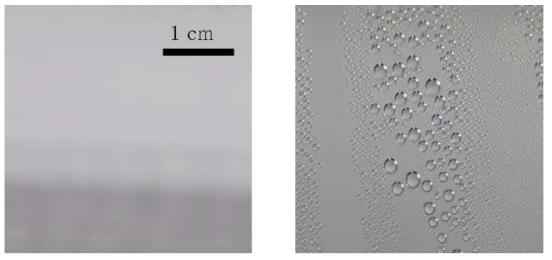 막응축(좌)과 적응축(우) 가시화 결과 및 확대 이미지