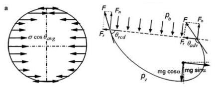 기울어진 표면에서 액적에 가해지는 중력과 표면장력의 힘의 균형(force balance)