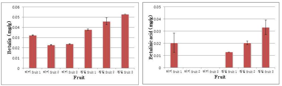 betulin and betulinic acid accumulation in fruit of turkey and cheongil Morus alba L. cultivars