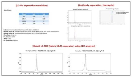 LC-UV를 통한 ADC 분석 결과