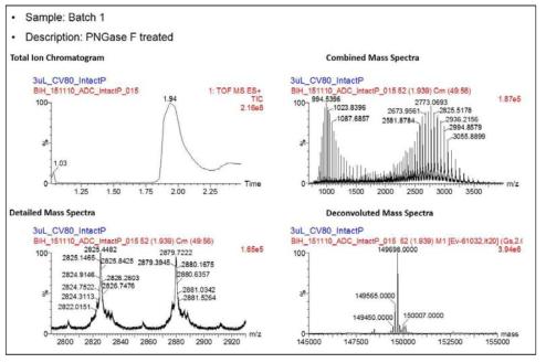 ADC intact mass 분석 결과 (batch 1 sample)