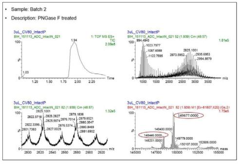 ADC intact mass 분석 결과 (batch 2 sample)