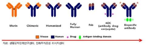 항체치료제의 기술 변천사.