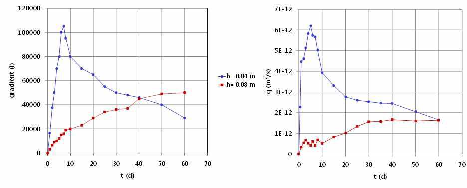 시간에 따른 각기 다른 위치에서 potential 변화와 시간에 따른 각기 다른 위치에서 water flux 변화