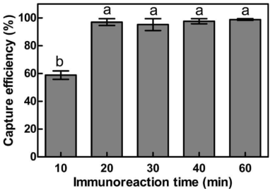 Effect of immunoreaction time on capture efficiency (CE) of 0.4 mg immunomagnetic beads against S. aureus at concentration of 8.25×104 CFU/mL.